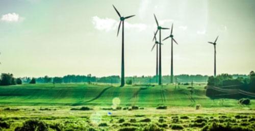 Merdies s'interessse à l'environnement et au développement durable
